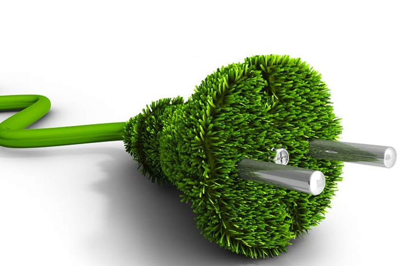 Think Green BAmpi 2021
